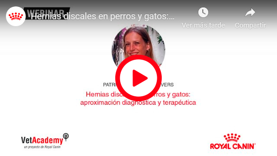 HERNIAS DISCALES EN PERROS Y GATOS: APROXIMACIÓN DIAGNÓSTICA Y TERAPÉUTICA