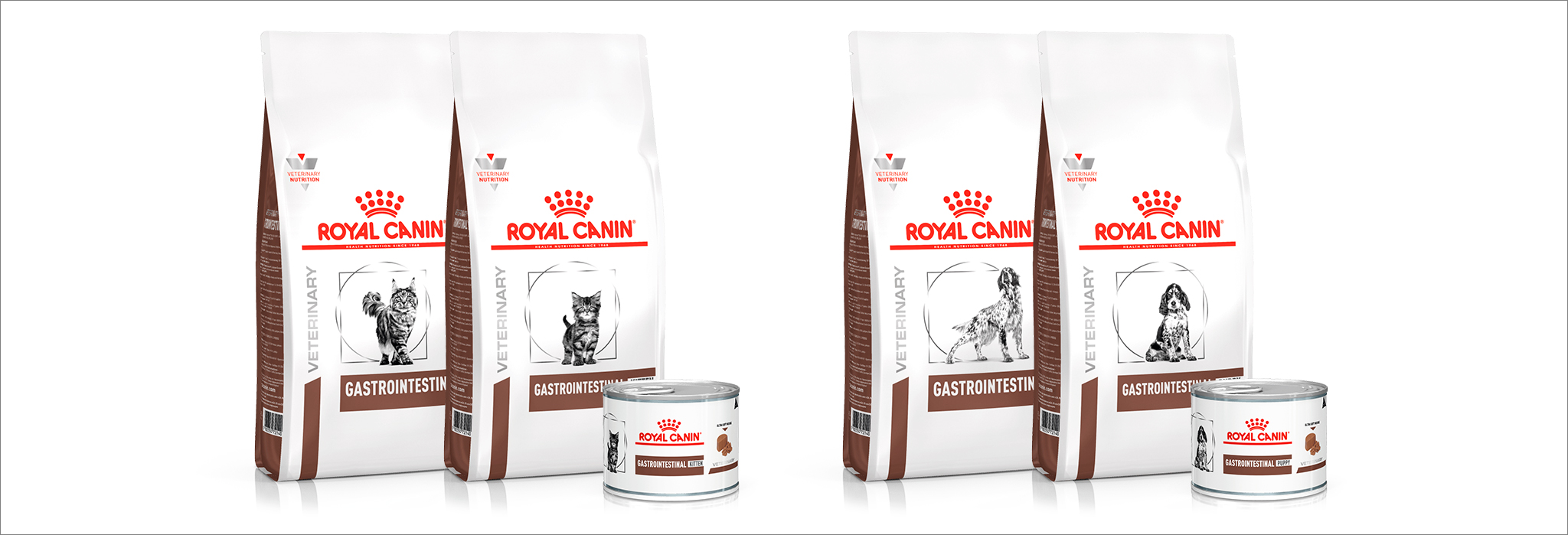 Royal Canin presenta sus dietas Gastrointestinal Tract para gatos y perros