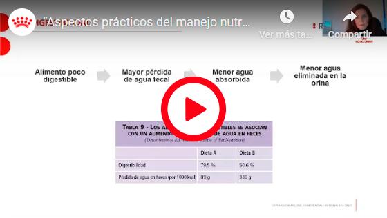 ASPECTOS PRÁCTICOS DEL MANEJO NUTRICIONAL DE LA ENFERMEDAD DEL TRACTO URINARIO INFERIOR