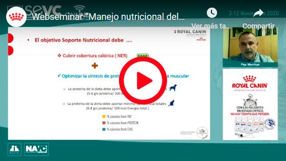 MANEJO NUTRICIONAL DEL PACIENTE CONVALECIENTE