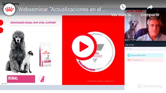 ACTUALIZACIONES EN EL DIAGNÓSTICO Y TRATAMIENTO DE LA ENFERMEDAD RENAL CRÓNICA