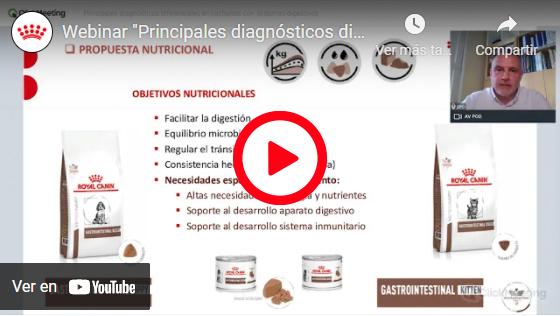 PRINCIPALES DIAGNÓSTICOS DIFERENCIALES EN CACHORROS CON SÍNTOMAS DIGESTIVOS