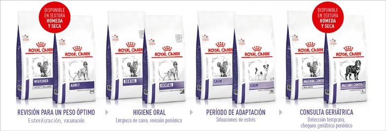 NUEVA GAMA HEALTH MANAGENT SU SALUD ESTÁ EN SUS MANOS